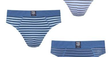 Pack de 5 slips de algodón azules