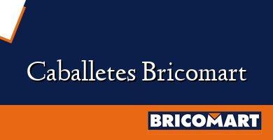 Caballetes Bricomart