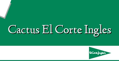 Comprar &#160Cactus El Corte Ingles
