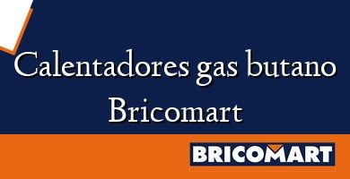 Calentadores gas butano Bricomart