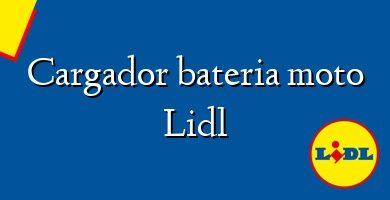 Comprar &#160Cargador bateria moto Lidl