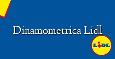 Comprar  &#160Dinamometrica Lidl