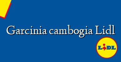 Comprar &#160Garcinia cambogia Lidl