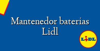 Comprar &#160Mantenedor baterias Lidl