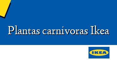 Comprar  &#160Plantas carnivoras Ikea